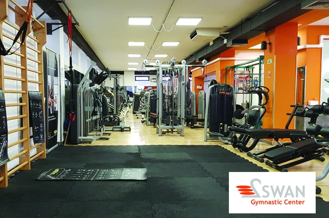 gym swan workout florence palestra