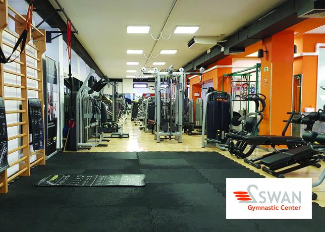 gym swan workout florence palestra